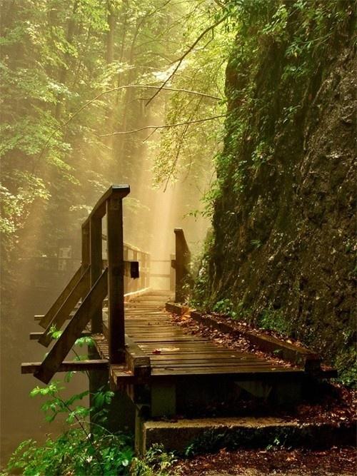 En busca de la luz interior