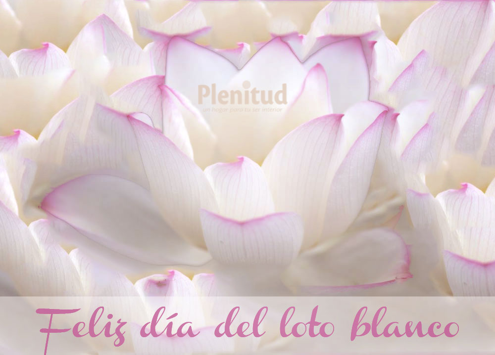 HPB: La princesa del loto blanco